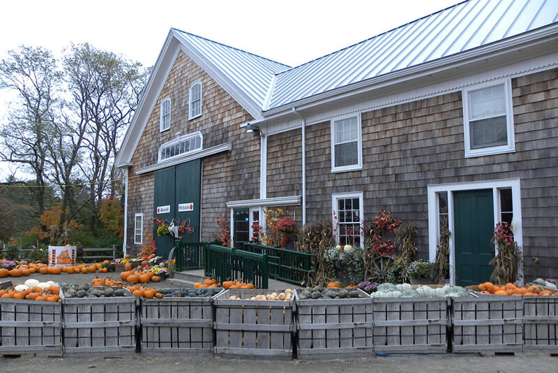 russell orchards fall activity